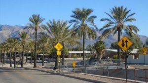 Desert Palms Park Real Estate values