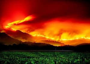 Napa Valley Fire 2017