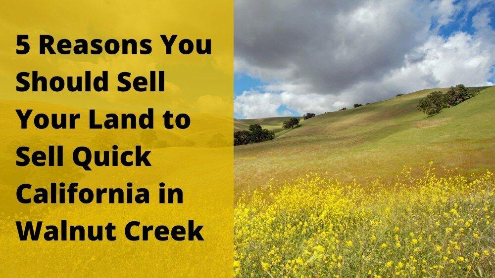 We buy properties in Walnut Creek