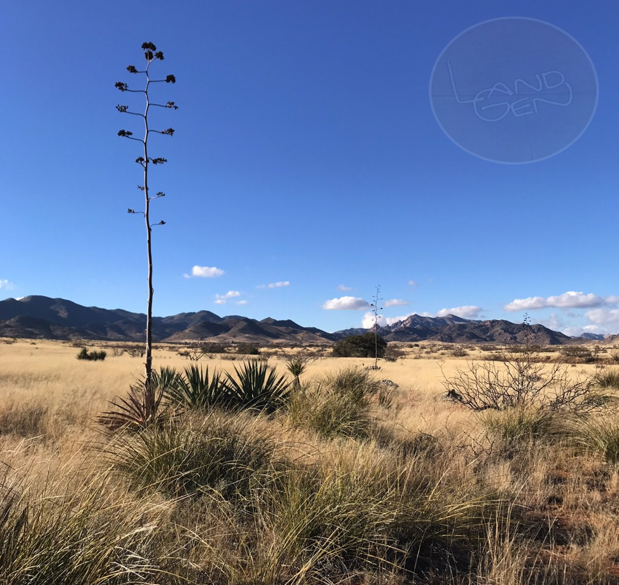5 Acres in Cochise County, AZ! - LandGen