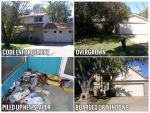 bird dog, deal finder, distressed property examples, property scout