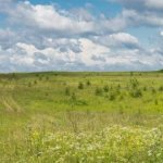 Selling Your Land in Jacksonville Beach FL