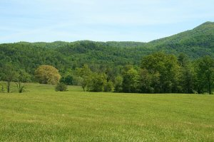 Buying Tennessee Land for Investment