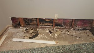 selling a home with mold in Houston