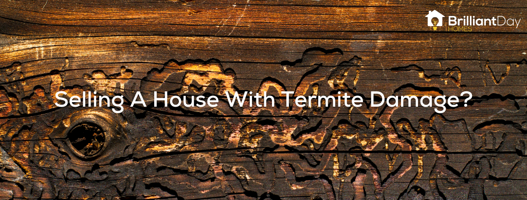 we buy houses damaged by termites in Houston