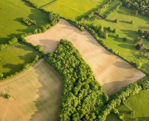 How much does an acre of land cost in Virginia?
