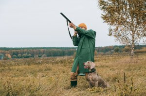 Hunting land for sale in Northern Virginia