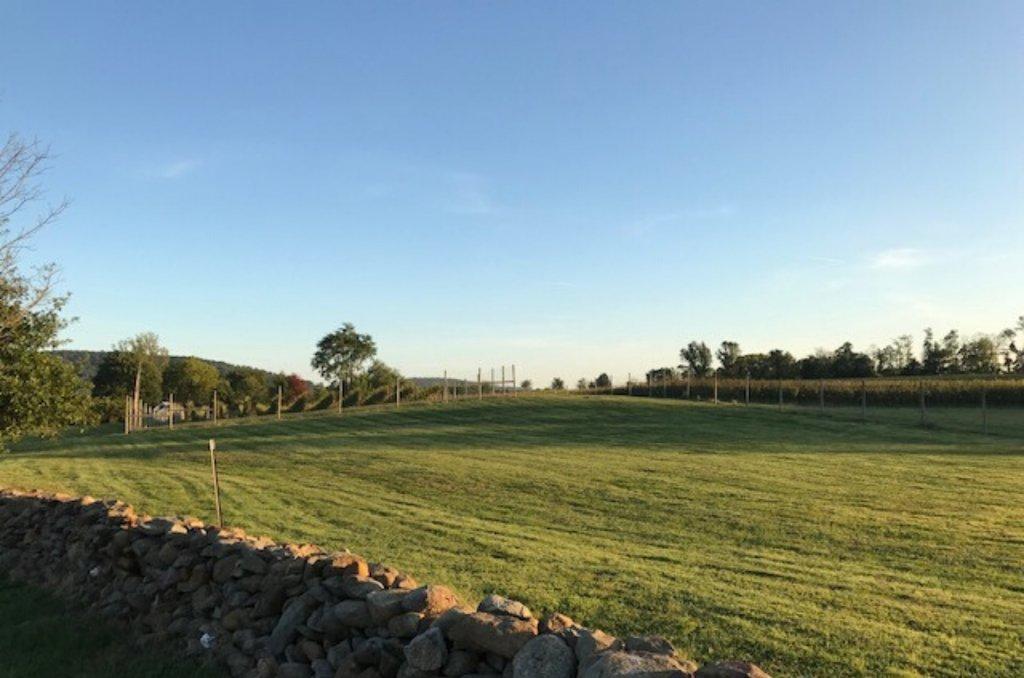 vineyard land for sale in western loudoun county va
