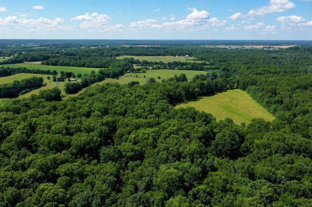 Land values in Virginia