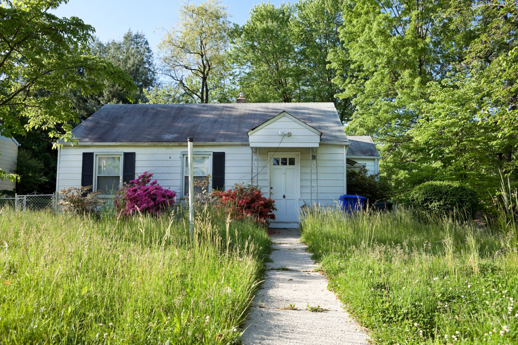 investment properties in Greenville NC