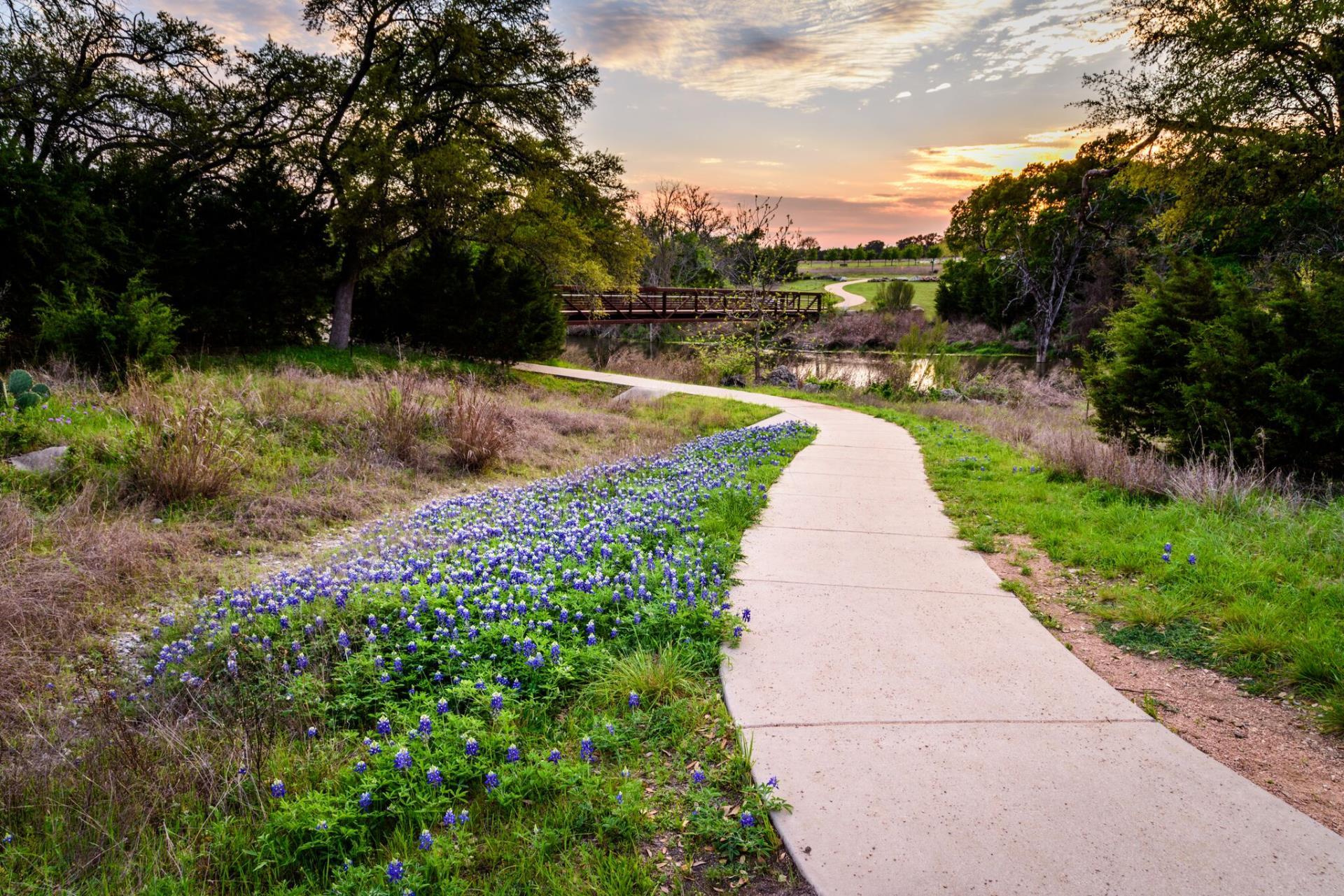 We buy properties in Cedar Park TX