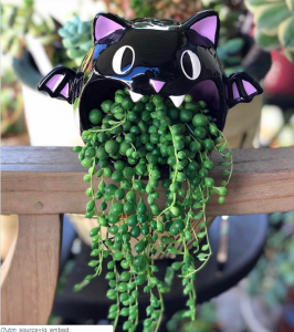 bat planter