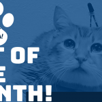 pet of the month! FEB Stella