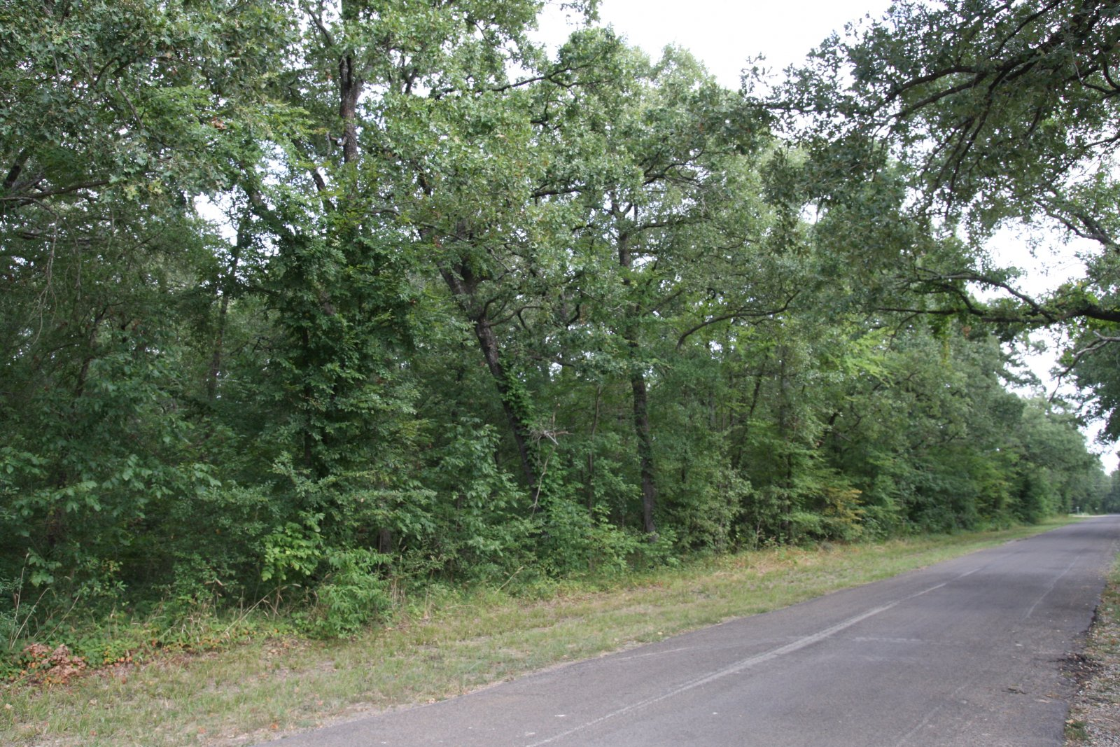 street view of land near huge Texas lake
