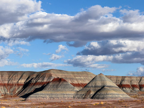 Petrified National Forest has plenty to see and do, including visiting Painted Desert