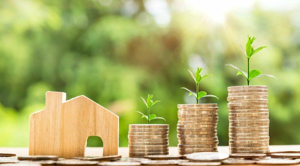 Find investment Partner