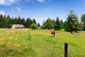 equestrian horse property for sale Florida