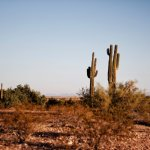 Cost of owning vacant land in Tucson Arizona