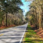 Selling Your Land In South Carolina
