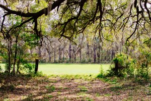 Sell My Land In Oconee County SC