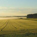is farmland a good investment in georgia