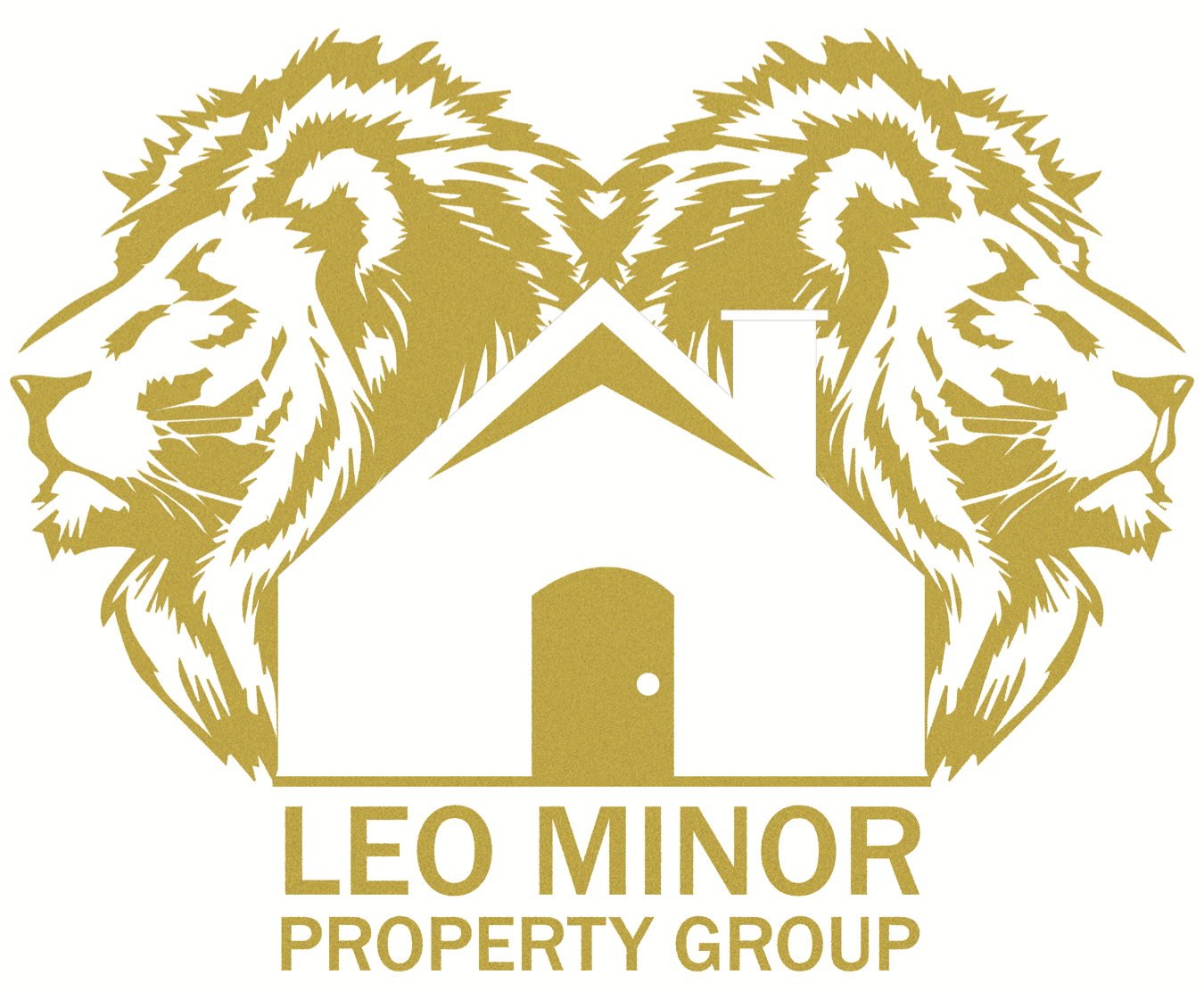Leo Minor Property Group LLC  logo