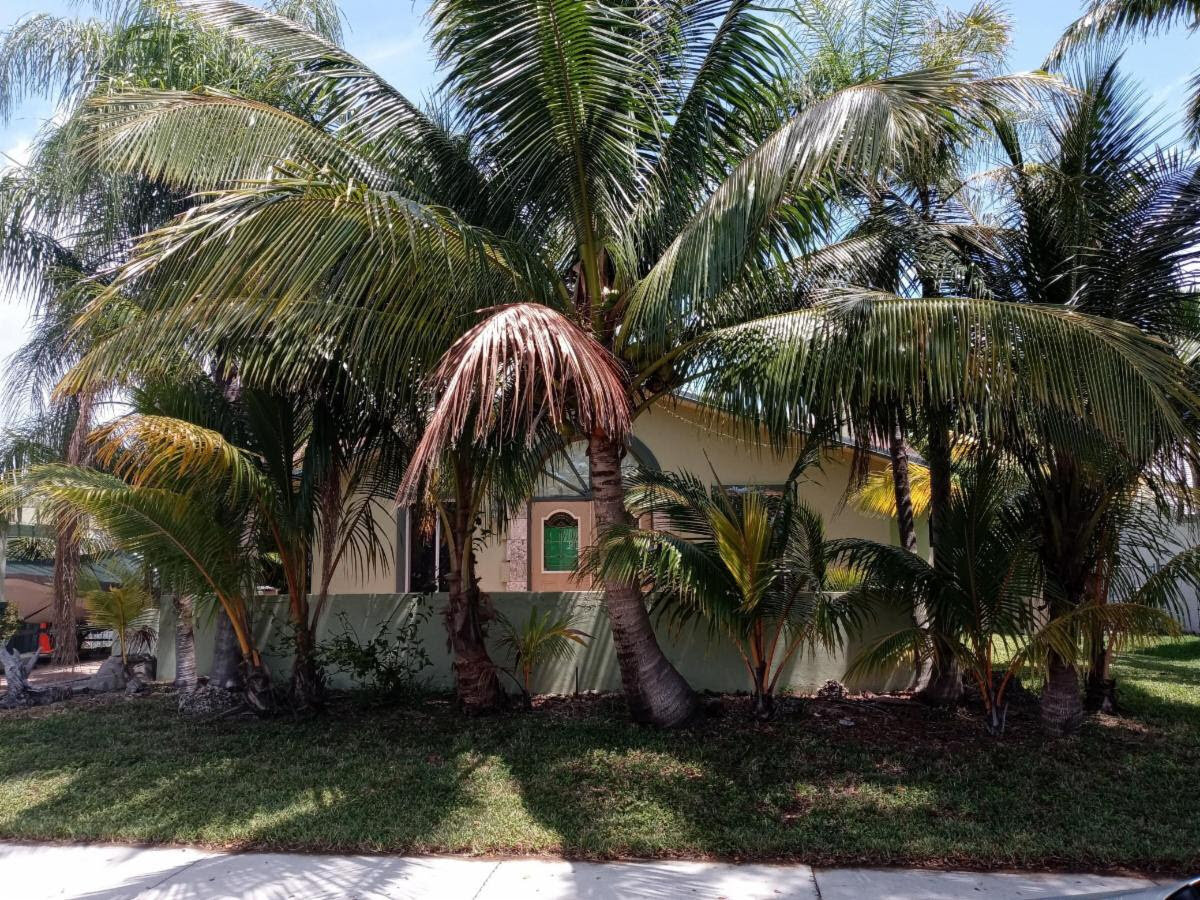 621 NE 2nd Pl, Dania Beach, FL 33004, USA