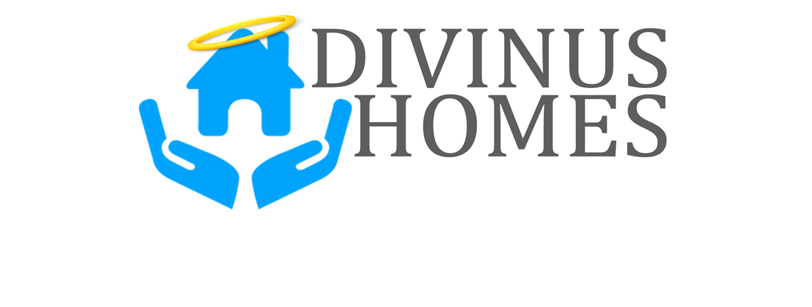 Divinus Homes Main logo