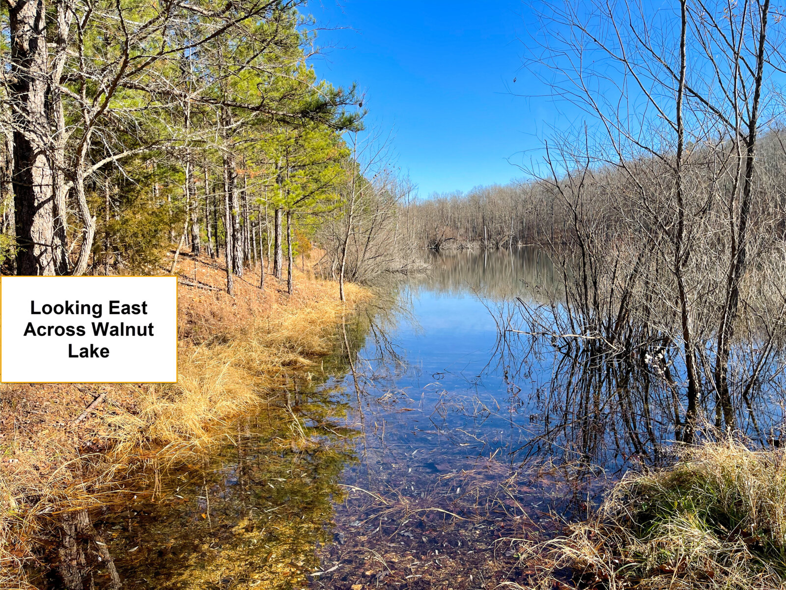 Rural Land For Sale With Lake Access