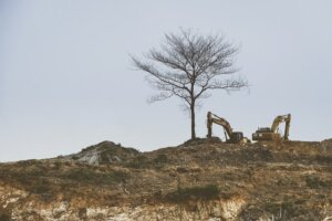 land cleaning to improve appeal