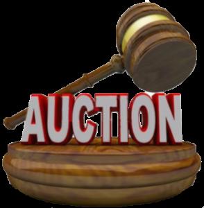 Real estate auction in Tucson AZ