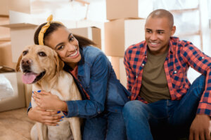 NextHome Titletown Real Estate Boston MA moving with pets