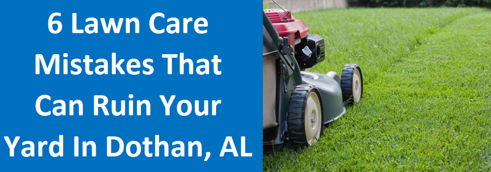 6 Lawn Care Mistakes That Can Ruin Your Yard in Dothan, Alabama