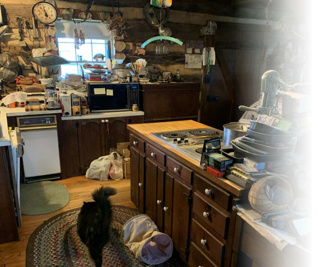 A kitchen of a home with a window. The kitchen is extremely cluttered with lots of trash and items and there is a black cat on the floor