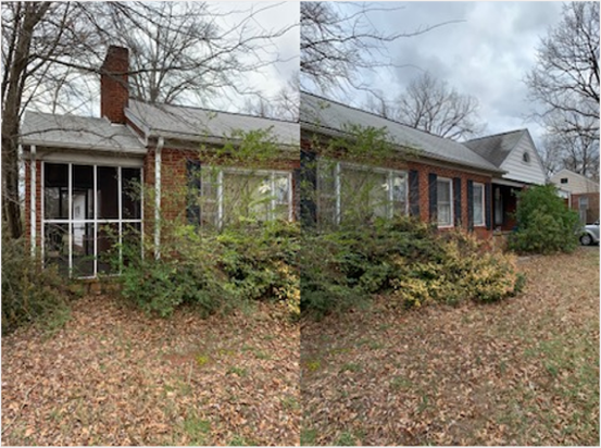 A 1 level brick house with trees and bushes in the front that are overgrown. Leaves are on the ground and the sky is overcast in the background