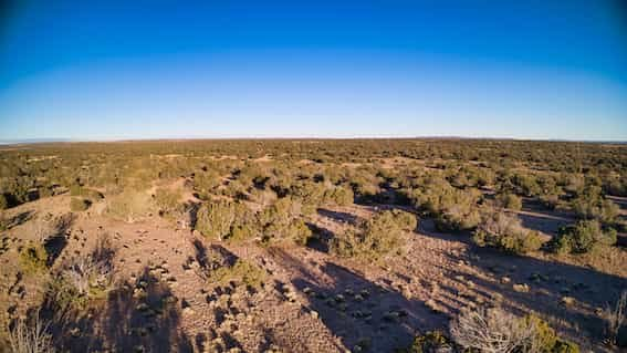 Land for Sale in Apache County AZ