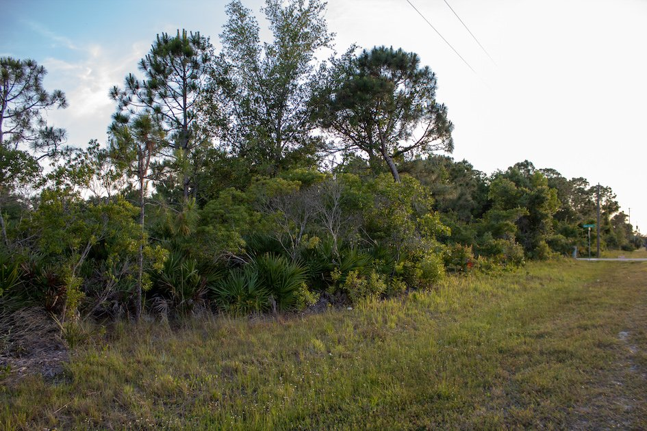 Punta Gorda land for sale - Compass Land USA