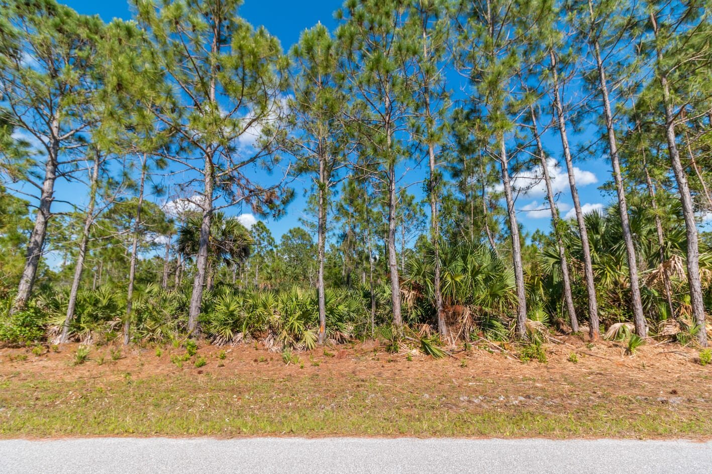 Charlotte County land for sale - Compass Land USA