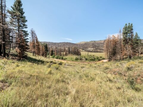 Costilla County lot for sale - Compass Land USA