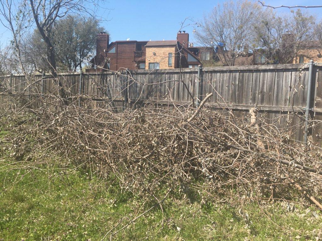 TM&F Lawns - Arlington TX - Landscaping Scam