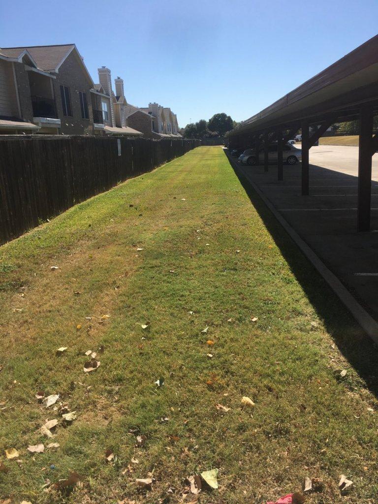 TM&F Lawns - Arlington TX - Billing Scam