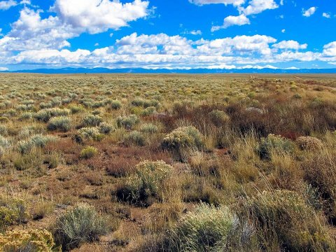 Buy Land in Colorado