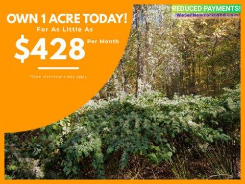 Land For Sale Hosner Mountain Rd Stormville, NY Main www.WeSellNewYorkLand.com