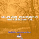 Sell Land Online For Free In New York — Here's A Little Known Trick