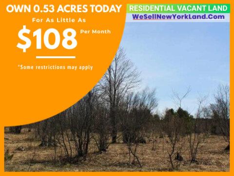 Wholesale Land For Sale Lot 990 Holbrook Ct, Elmira, MI Main Image www.WeSellNewYorkLand.com