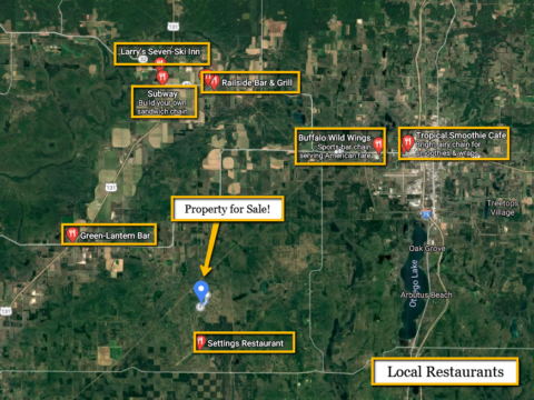 Land For Sale Lot 366 Manistee Heights Dr. Elmira, MI