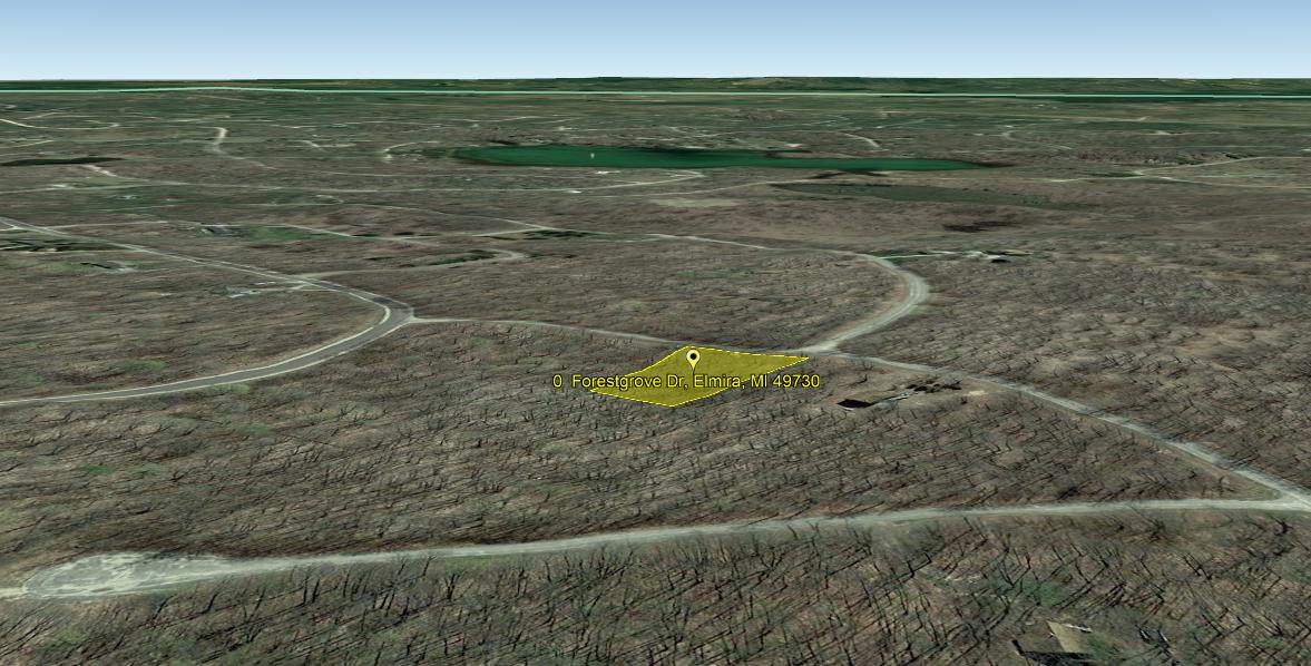 Land For Sale Lot 185 Forestgrove Dr. Elmira, MI