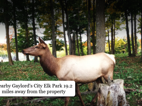 Lake of the North Land For Sale Lot 175 Wyndwood Dr. Mancelona, MI