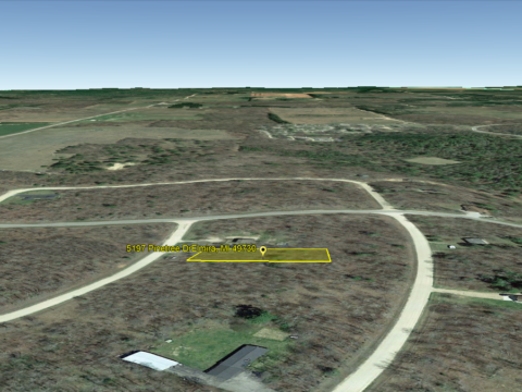Lakes of the North Land For Sale Lot 501 Pinetree Dr. Elmira MI