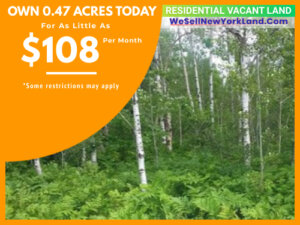 Wholesale Land For Sale Lot 118 Snowridge Trail, Elmira, MI